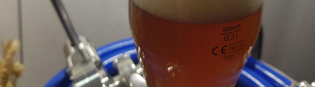 Міні-пивоварня 250 L-5